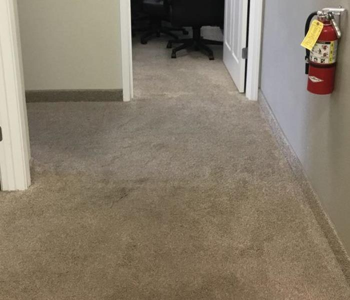 WATER IN HALLWAY CARPET