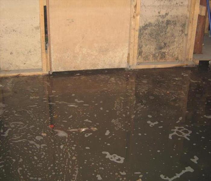Commercial Cleaning Up Sewer Damage at Your Commercial Facility
