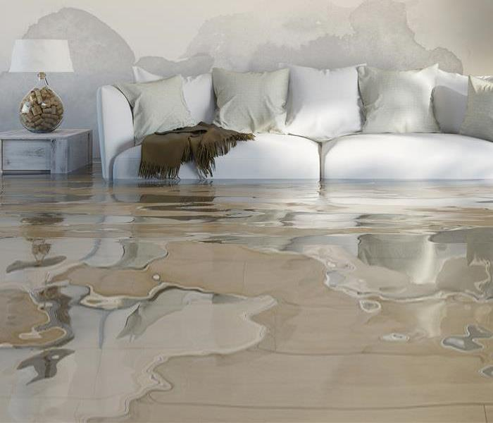 Water Damage Sewer Damage? Follow These Steps Toward Restoration