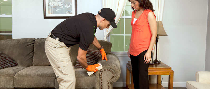 Pismo Beach, CA carpet upholstery cleaning